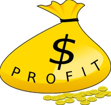 Forex bonuses and profit